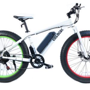 Fat Bike 500W