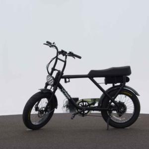 Bicicleta elétrica 250W / 36V – Knaap